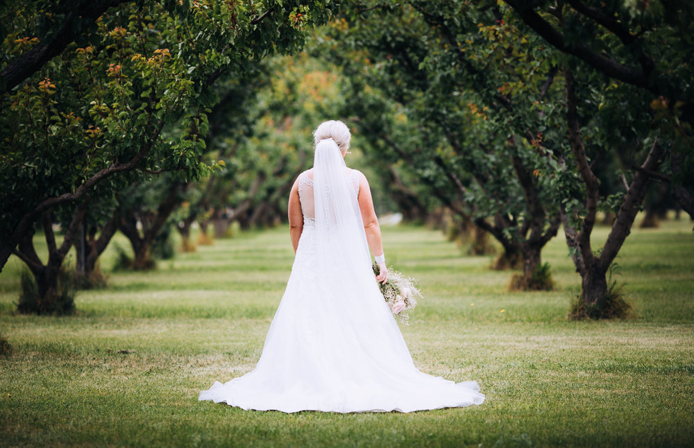 wanaka wedding photographer-36.jpg