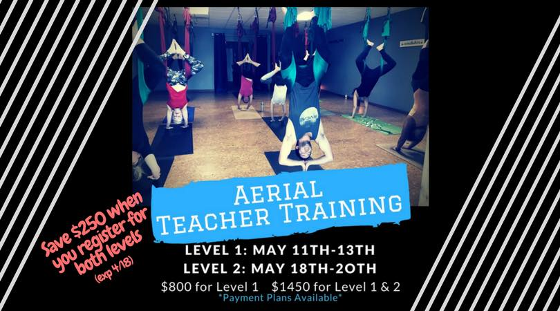 Yogi Perogi Aerial Teacher Training