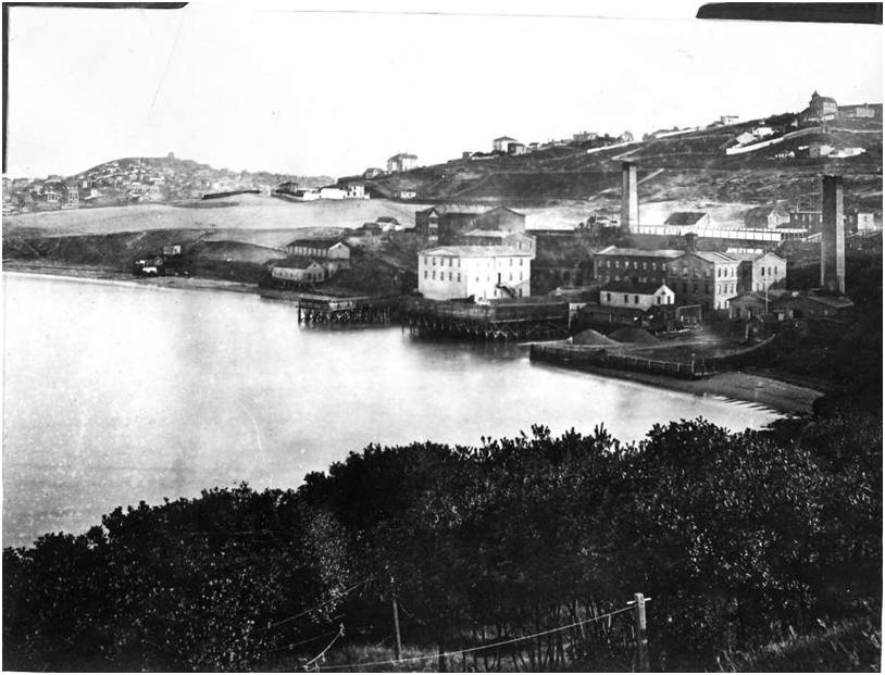 Pioneer Wool Mills 1867