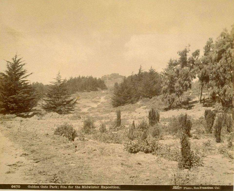 Golden Gate Park before 1893