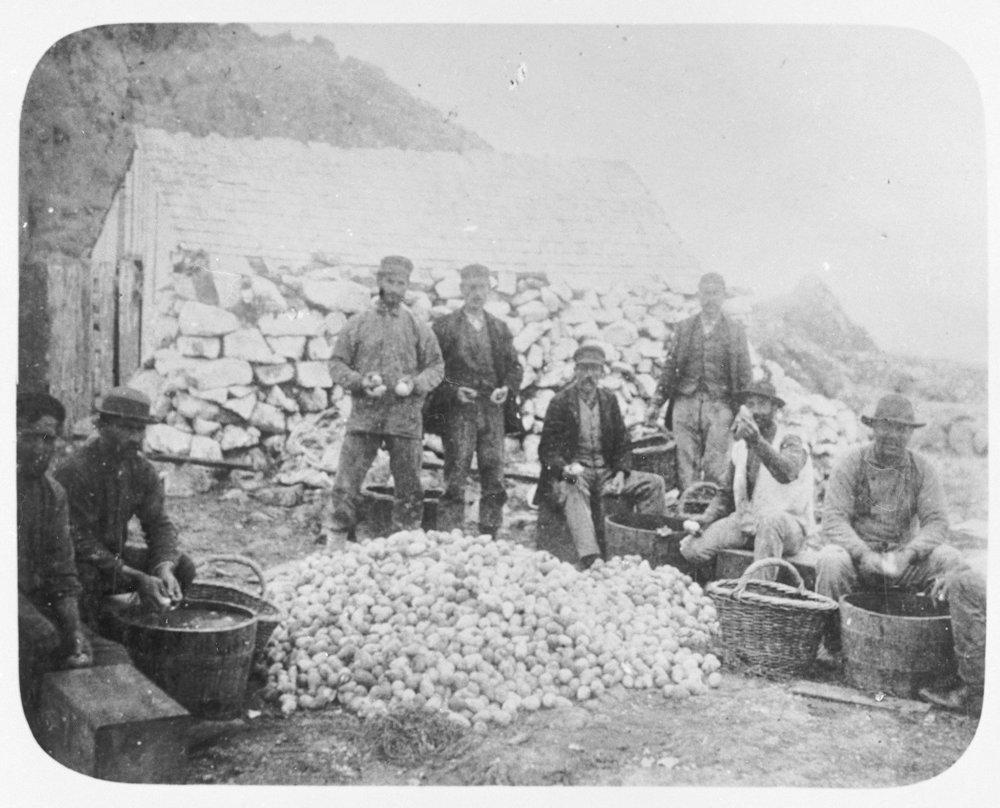 Farallones 1850