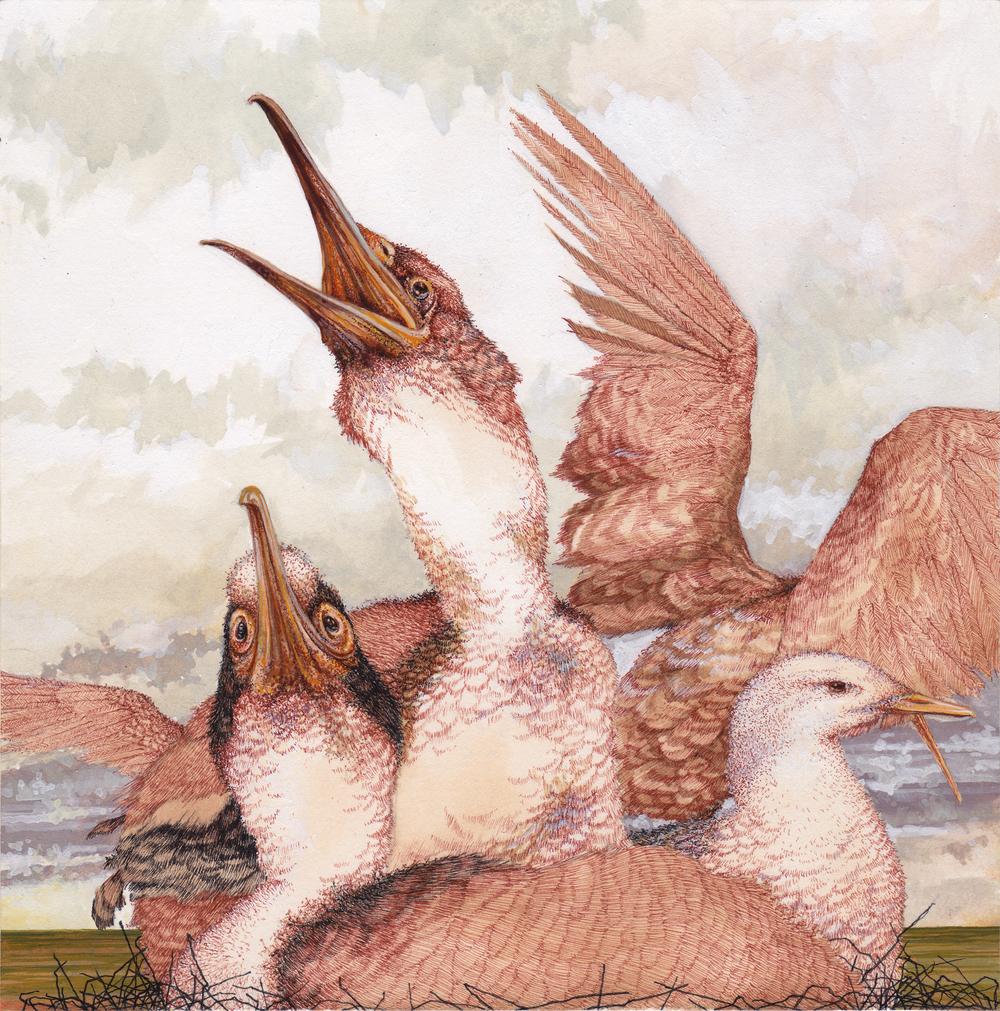 Feral Flock