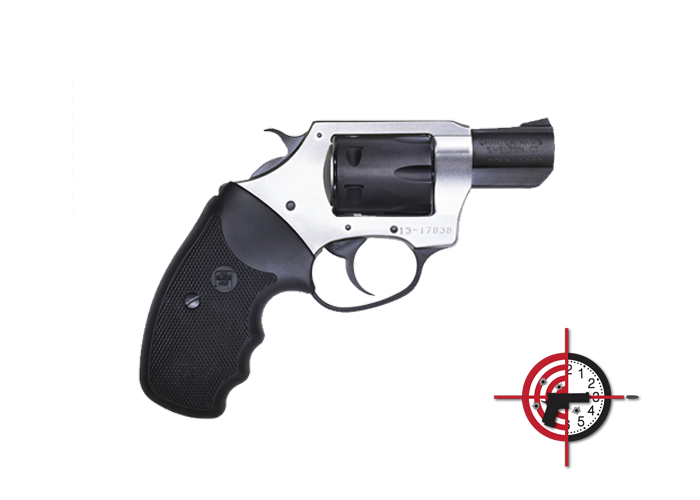 Charter Arms<br>Pathfinder .22 Magnum