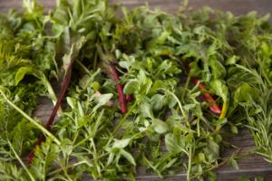 zest fresh, organic vegatables