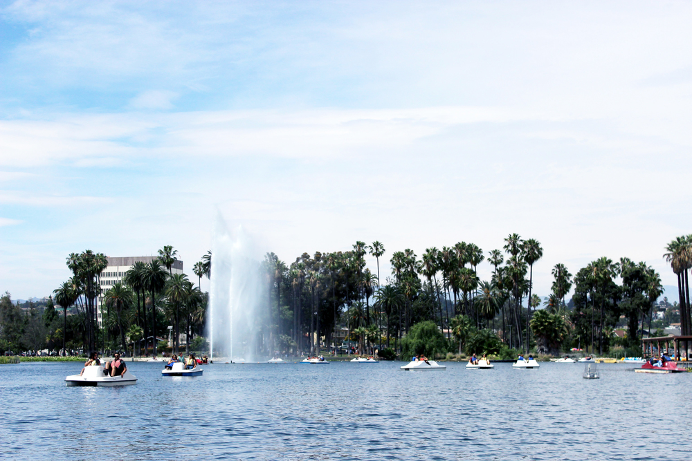 Paddle boats at Echo Park Lake