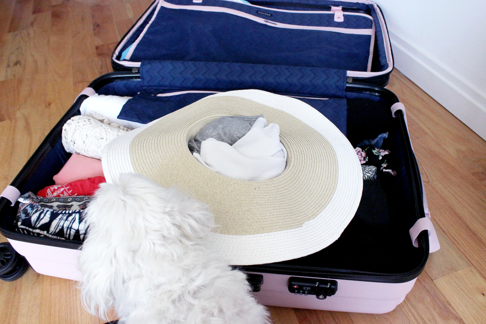 Packing the sunhat