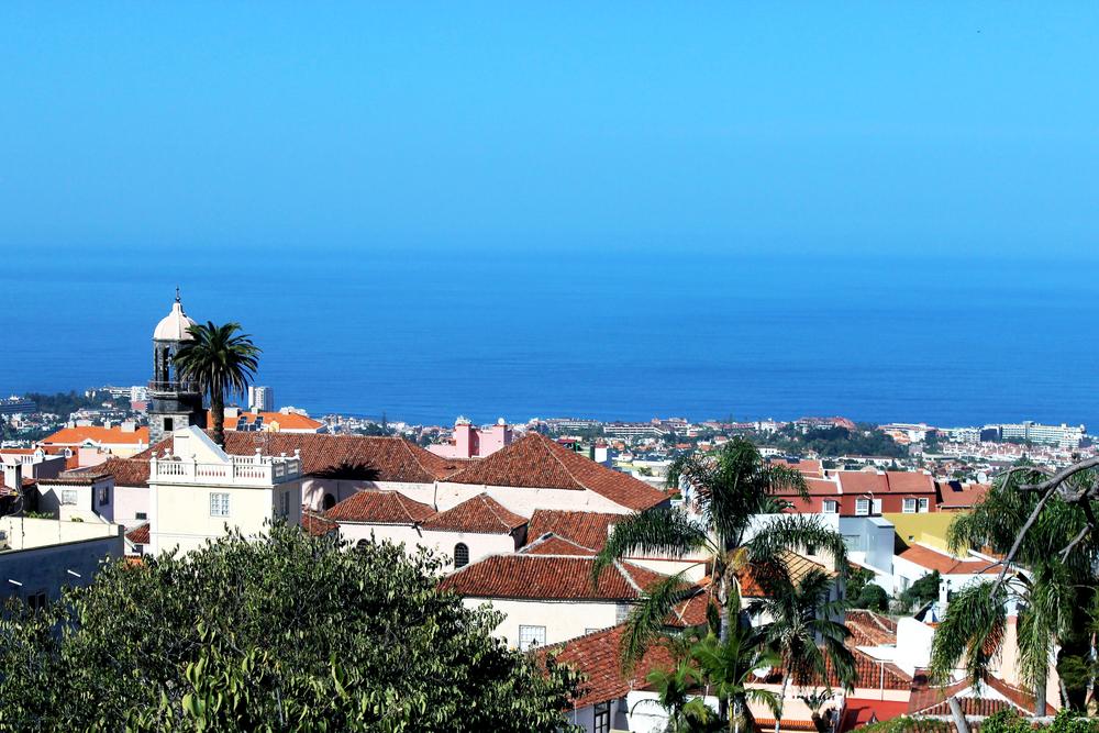 Overlooking La Orotova