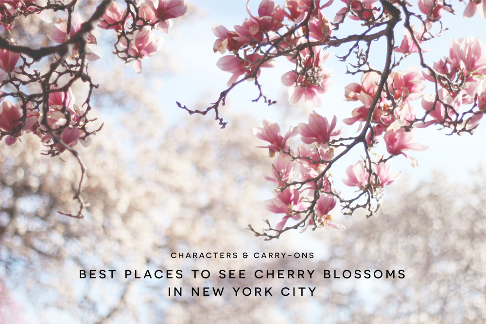 BEST PLACES TO SEE CHERRY BLOSSOMS IN NEW YORK CITY