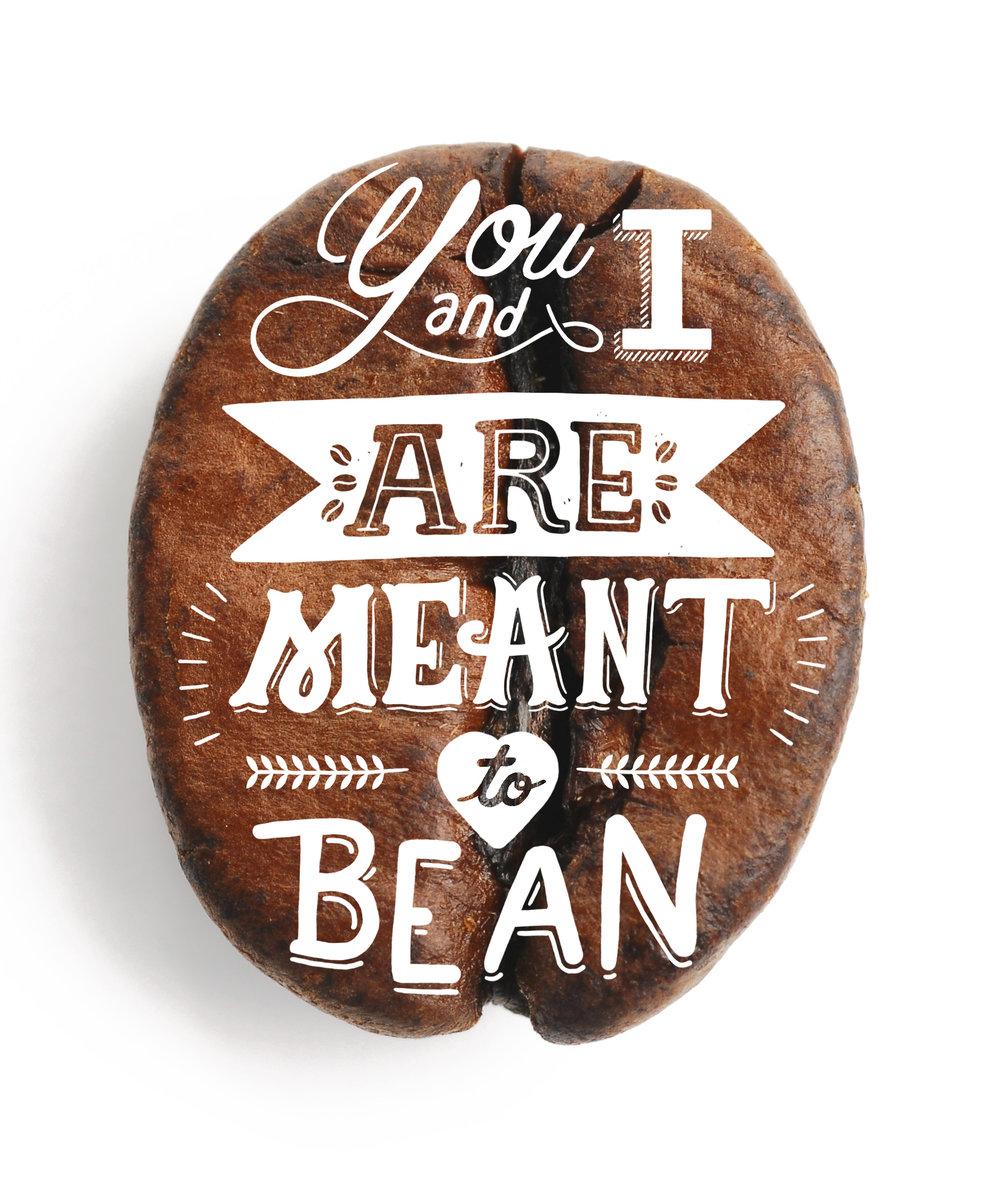 bean.jpg