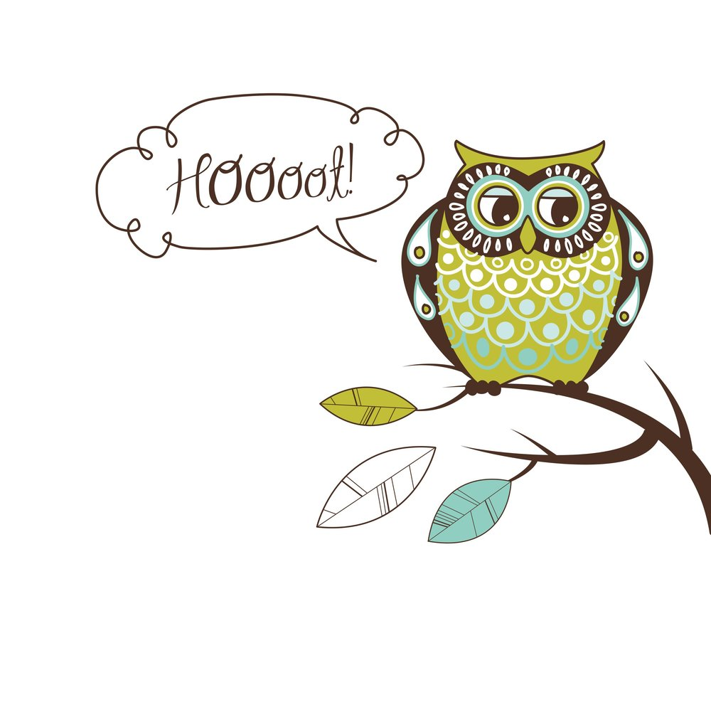 cute-vector-owl-hoooot-card_Mk_8Rt_u_L.jpg