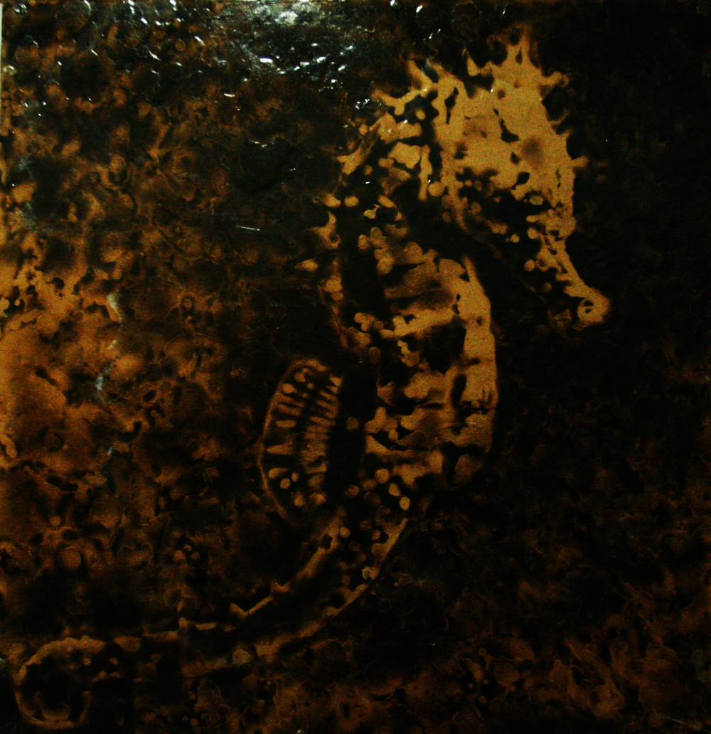 "HoChul Lee  The Sea Horse, 2009  Water and fire on wood  22.5"" x 24.5"""