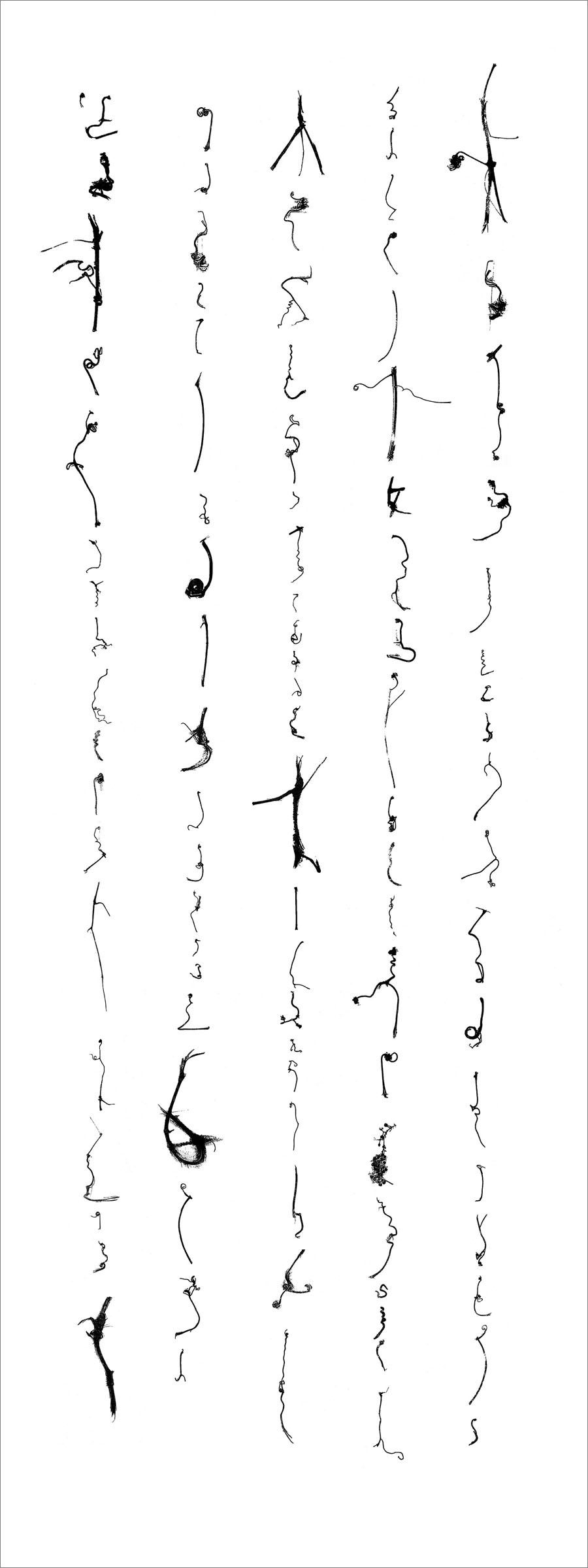 "Cui Fei  Tracing the Origin III - no. 2, 2003  Computer-generated image, printed on paper,  ed. 4/25, 16"" x 6"""