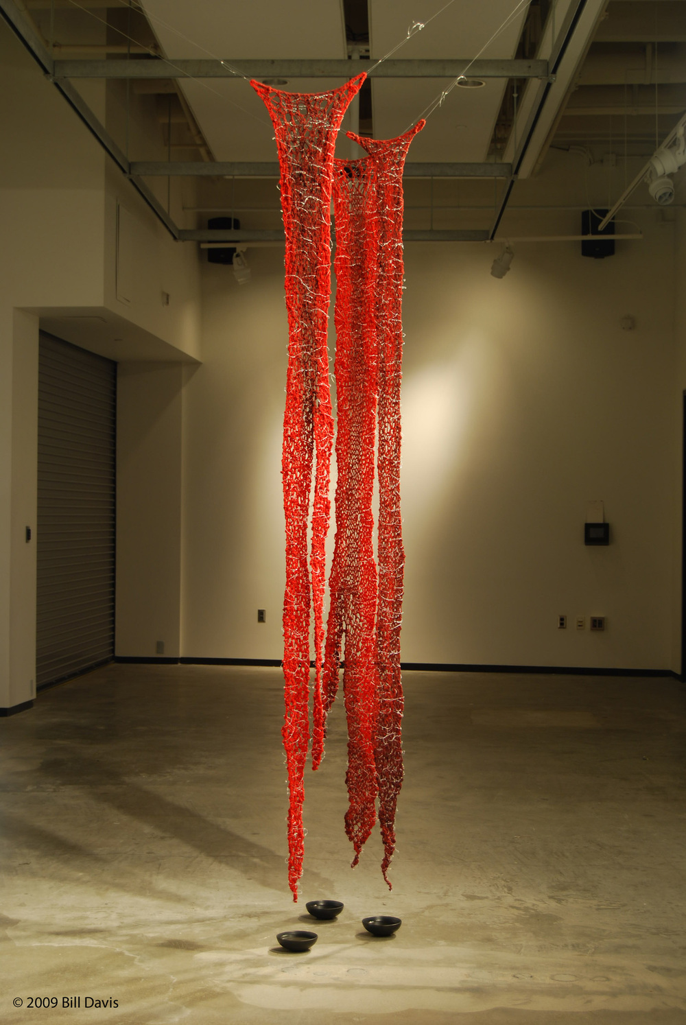 Indrani Nayar - Gall  Loosing Dawn, 2008  Installation; Red Yarn, hand coloring, fishing line, hot glue  Dimensions Variable, approx. 8.5ft H