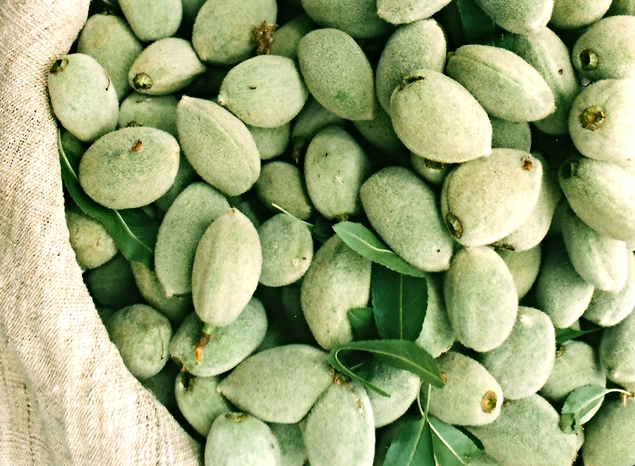 "This is almond fruit at its youth! These are the ""green almonds,"" named because of the soft green skin on the outside. The inner shell has not hardened yet and the young almond has a tangy, sour flavor."