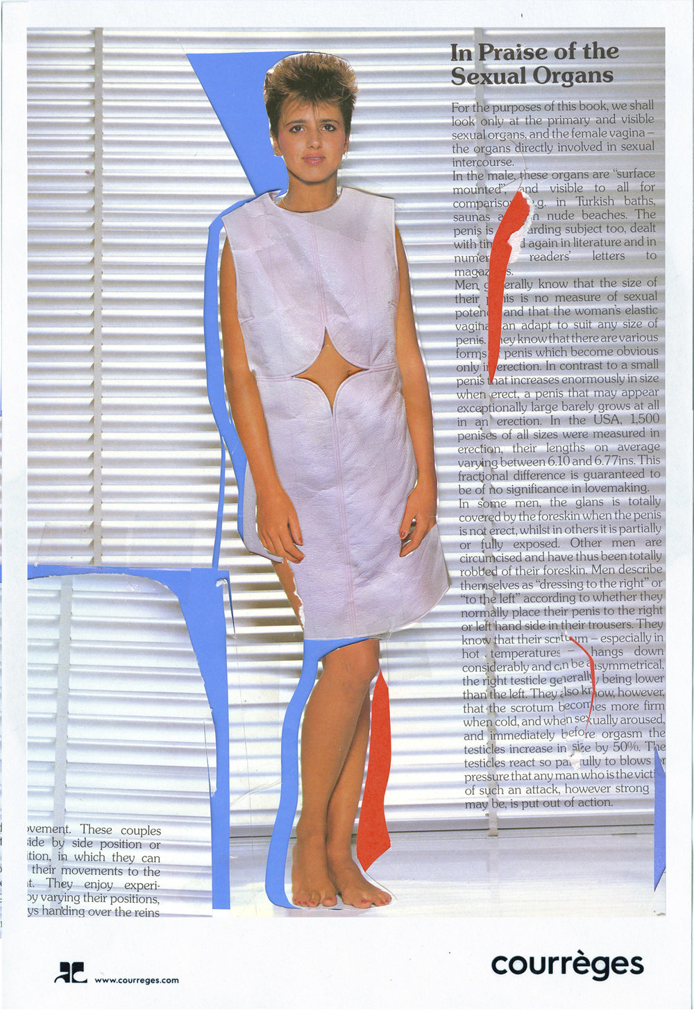 Courreges100.jpg