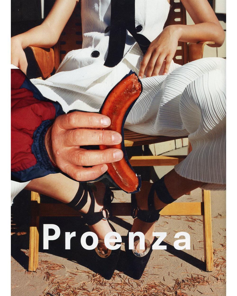 ProenzaDog.300.jpg