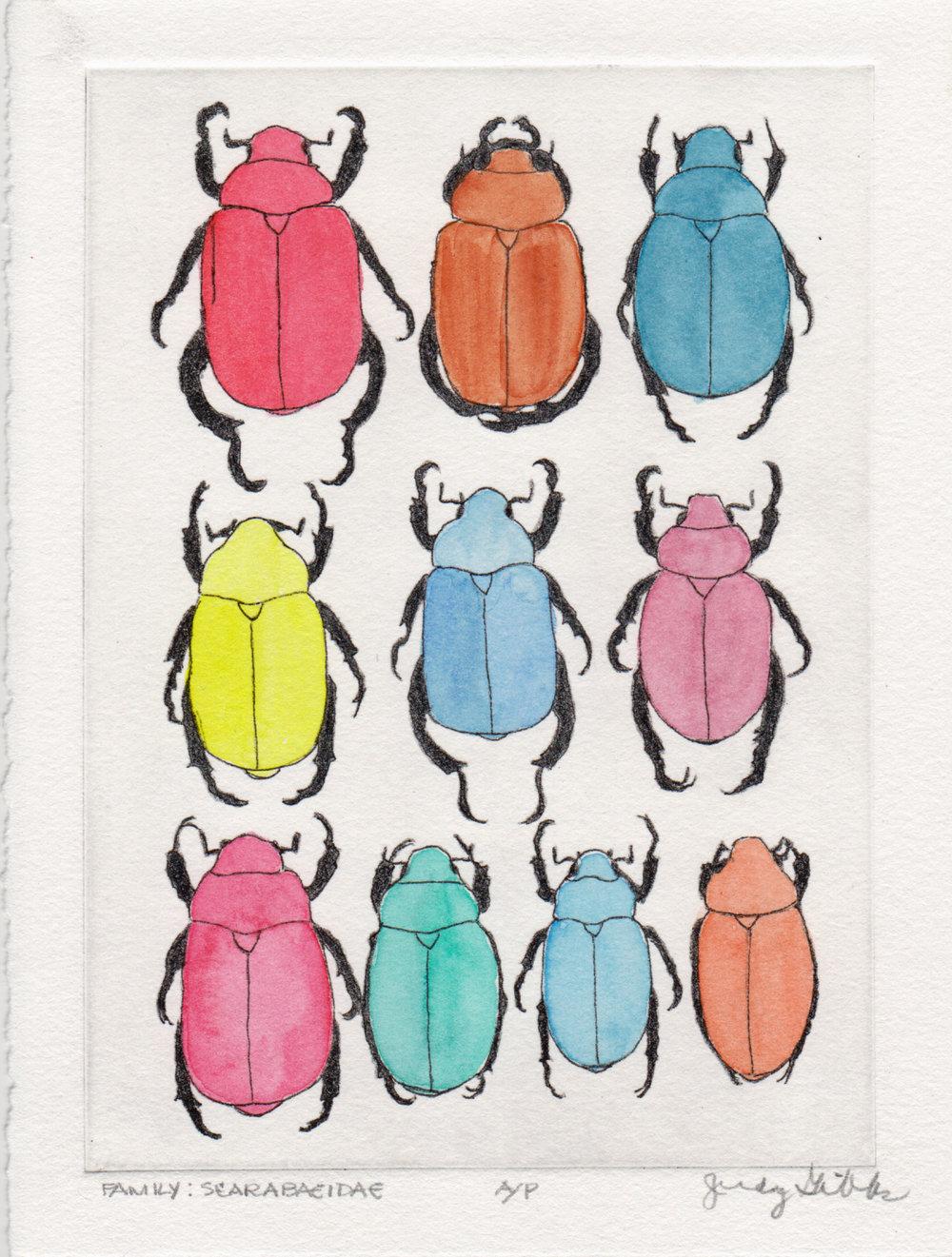 6_Judy Gibbs_Scarabacidae.jpg