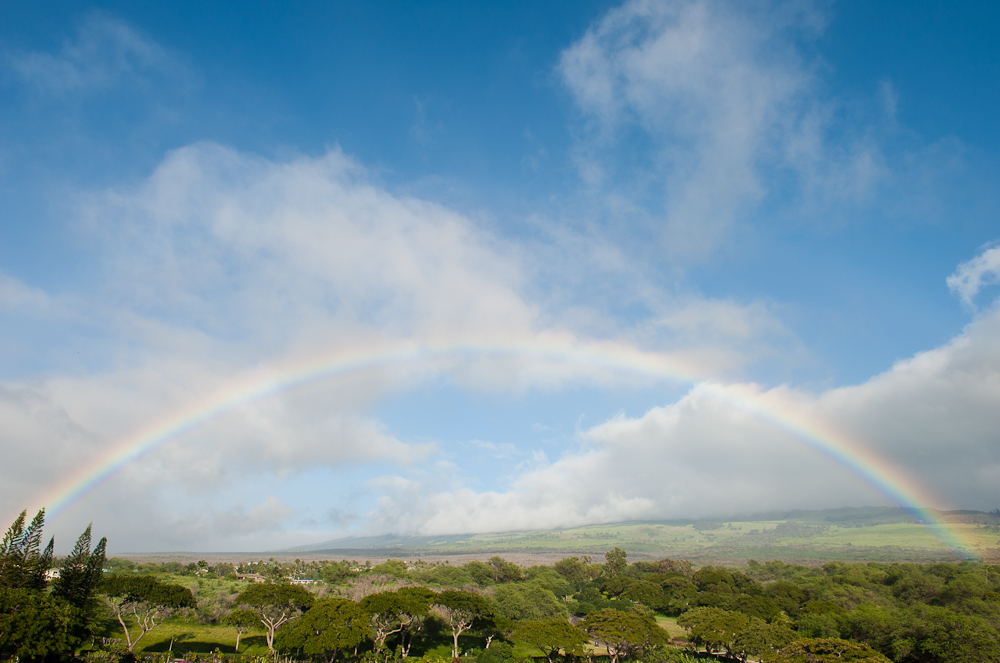 sean-williams-photographer-travel-beach-maui-hawaii-5.jpg