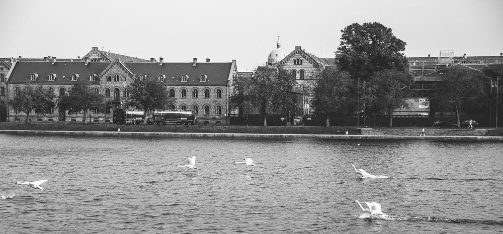 Copenhagen-6.jpg