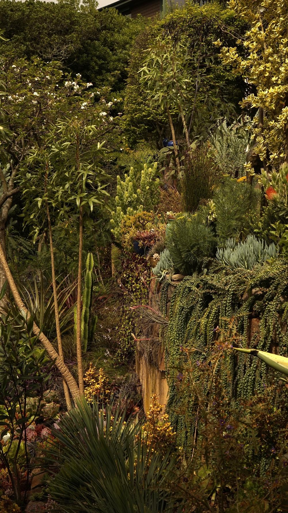 Gardens and things — Garden Fantasia