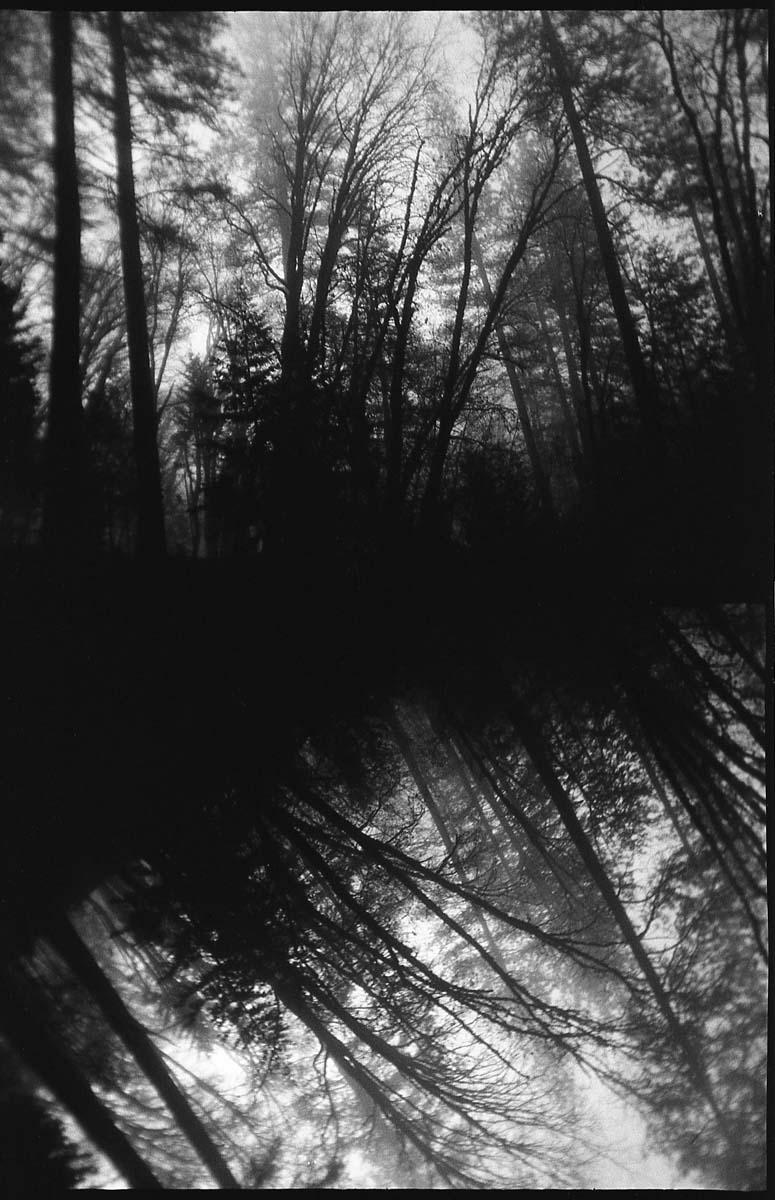 Giselle Brewton - The Endless Storm