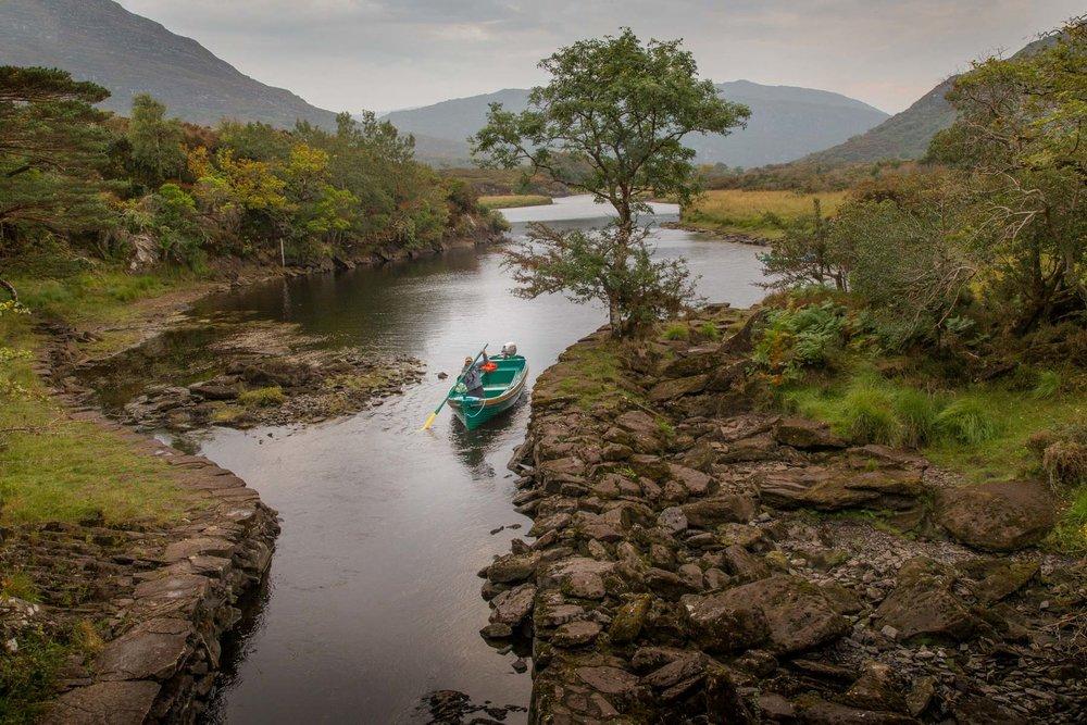 Rhonda Dubin - Wandering the Lakes of Killarney