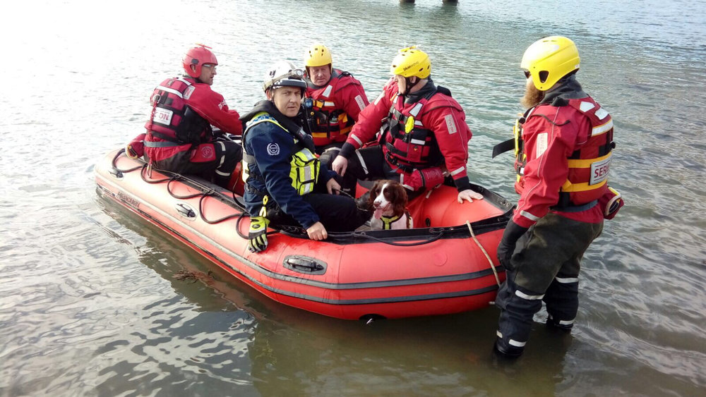 Search And Rescue dog Molly and handler James Lewis get some water rescue training with Serve On volunteers.