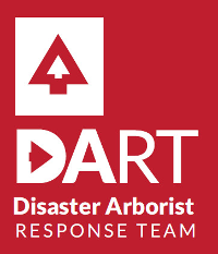 DART International badge.png