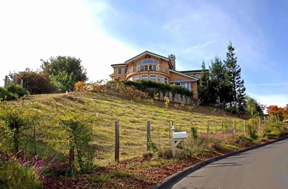 Bay Area Redwood City Architect Palomar Park SideAngle.jpg