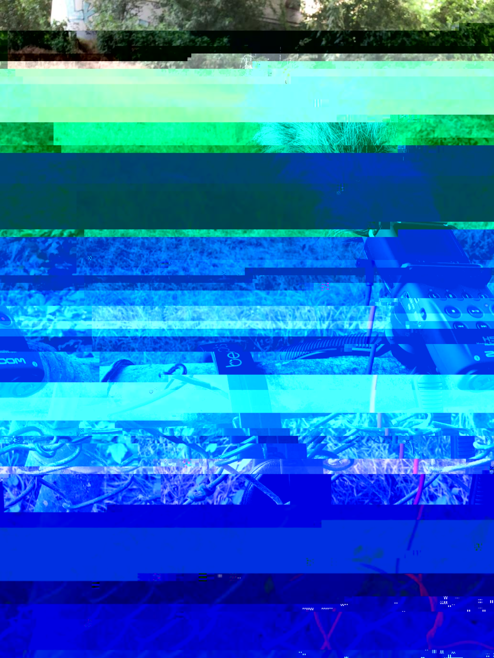 DhwsbY9UcAEmehn-glitched-7-12-2018-3-13-28-PM.png