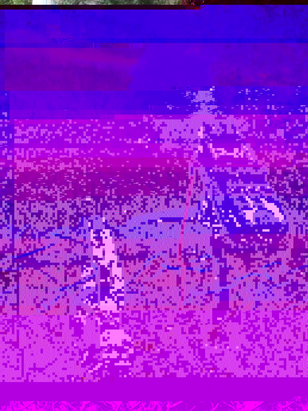 DhwsbY9UcAEmehn-glitched-7-12-2018-3-18-56-PM.png