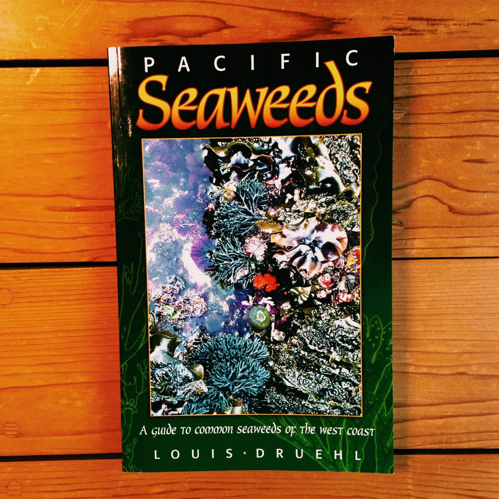 Pacific Seaweeds: A guide to common seaweeds of the West Coast