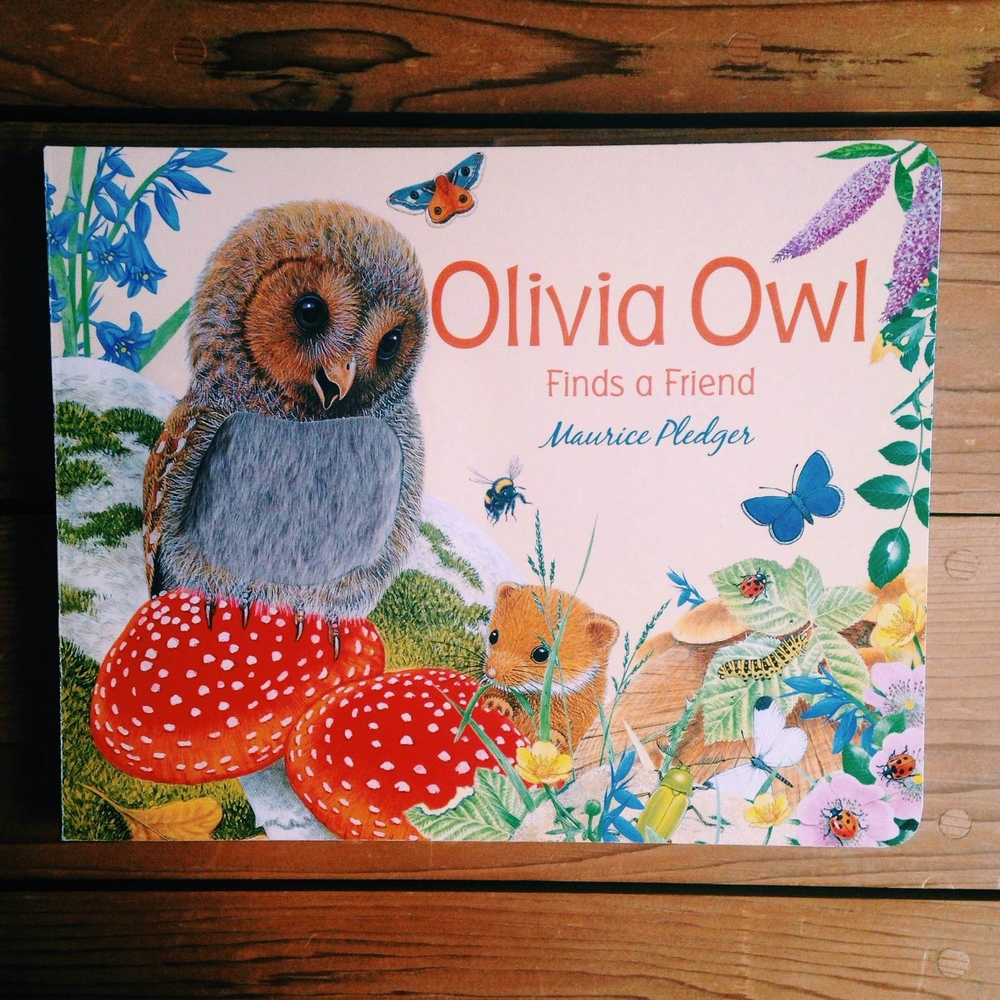 Olivia Owl Finds a Friend