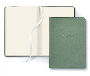 Photo of a green blank open journal