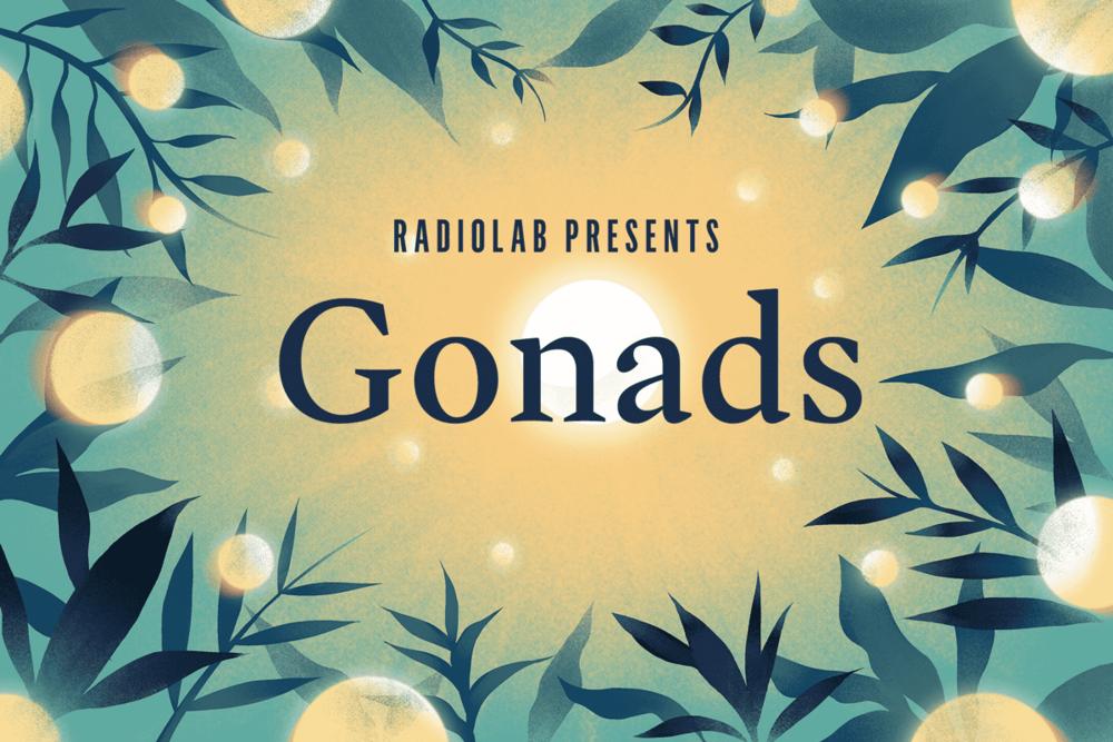 Gonads_Social_Image.png