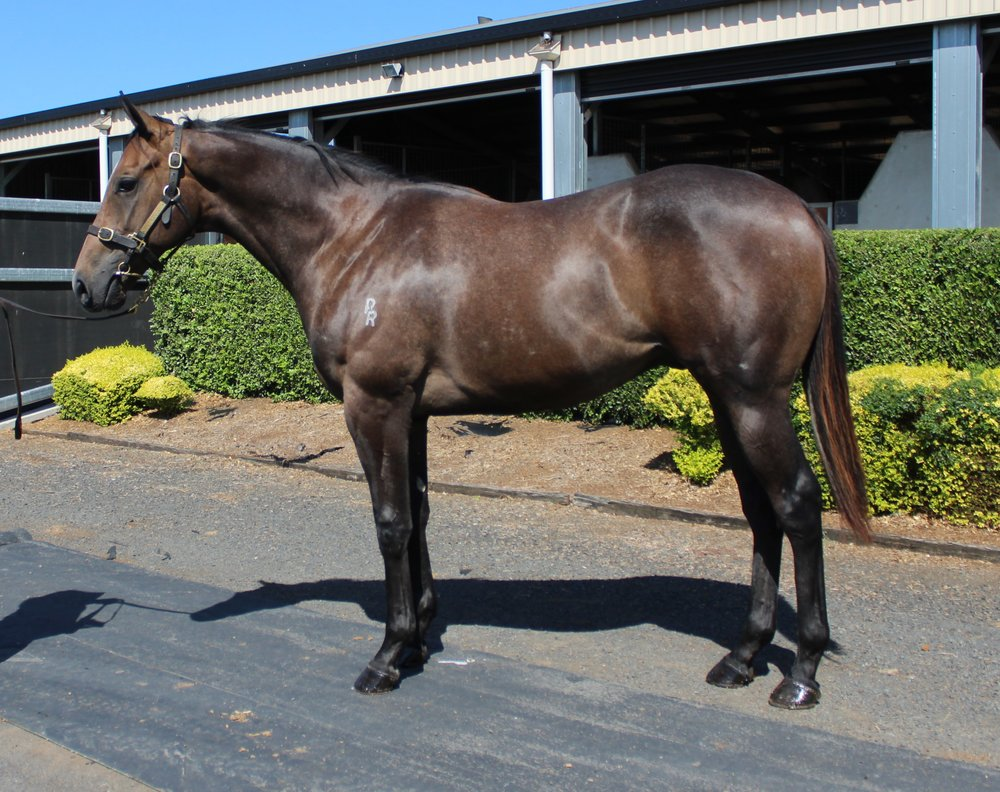 Lot 80 Top Echelon - Idesa Bay