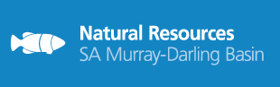Narural Resources SA Murray - Darling Basin.png