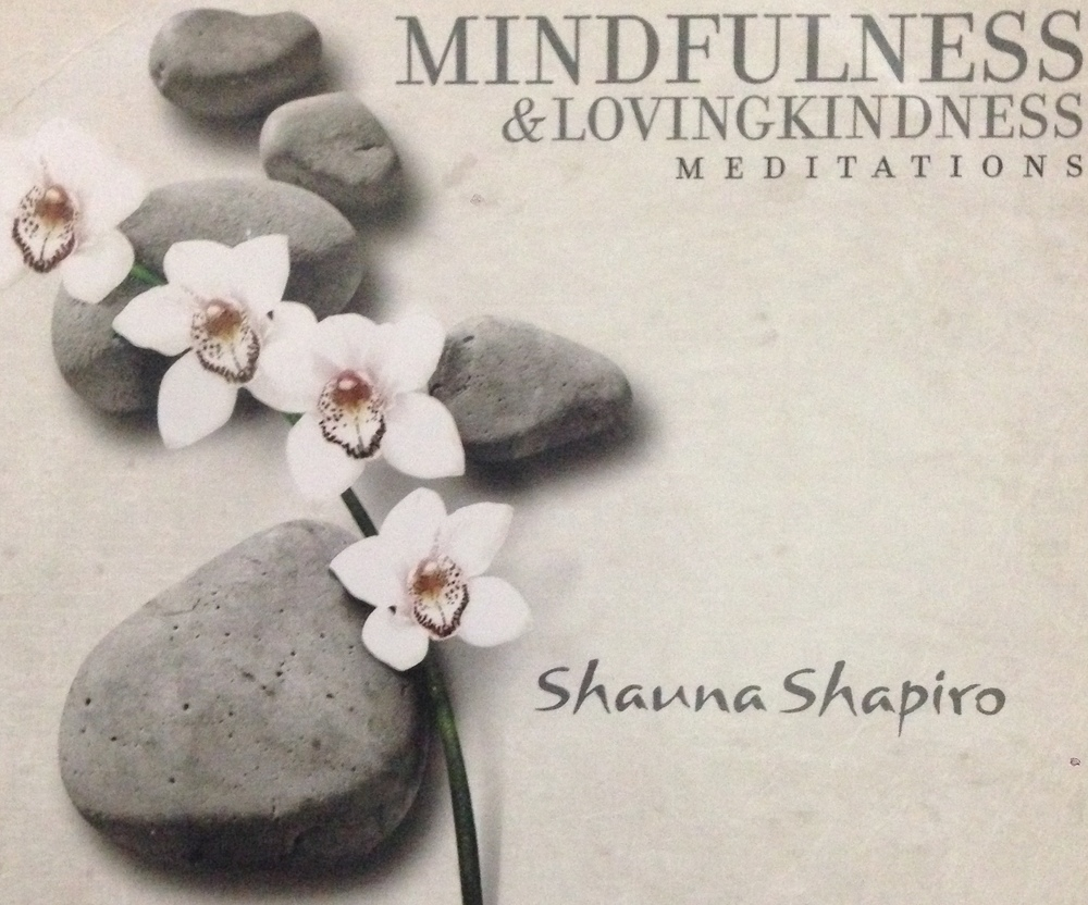 Guided Mindfulness and Lovingkindness Meditation with Dr. Shauna Shapiro
