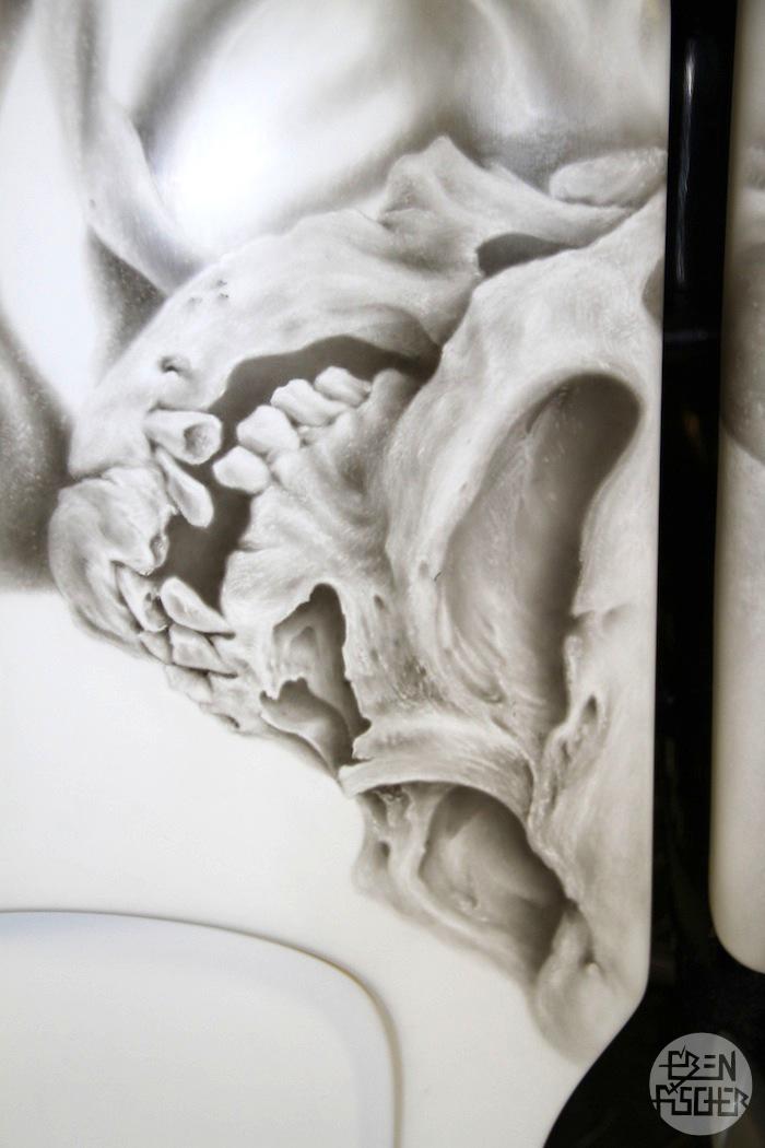 Skull+close+up.jpg