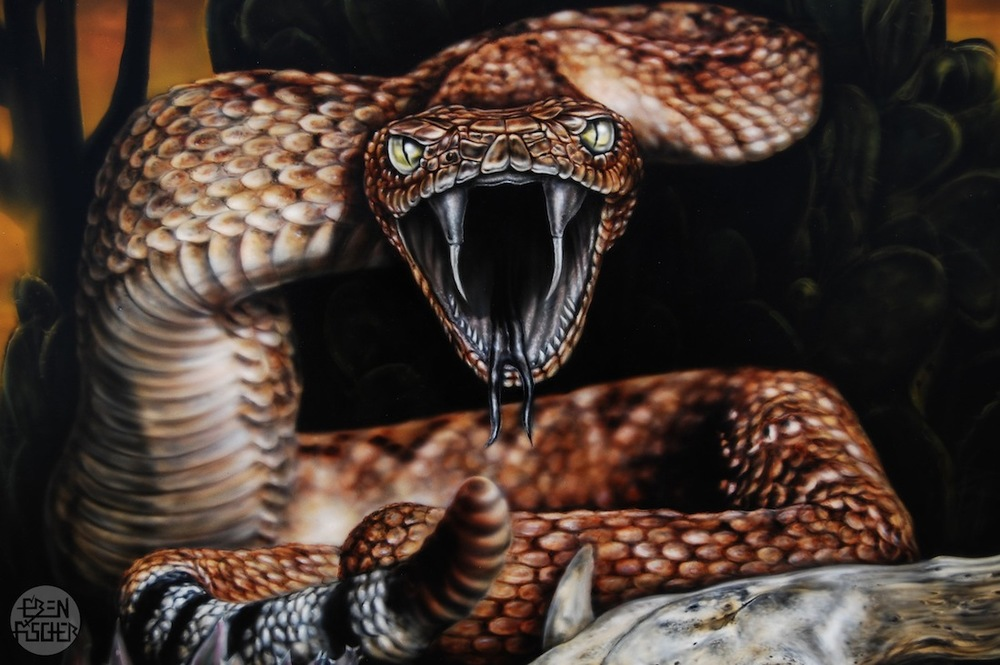 Rattle+Snake+2.jpg