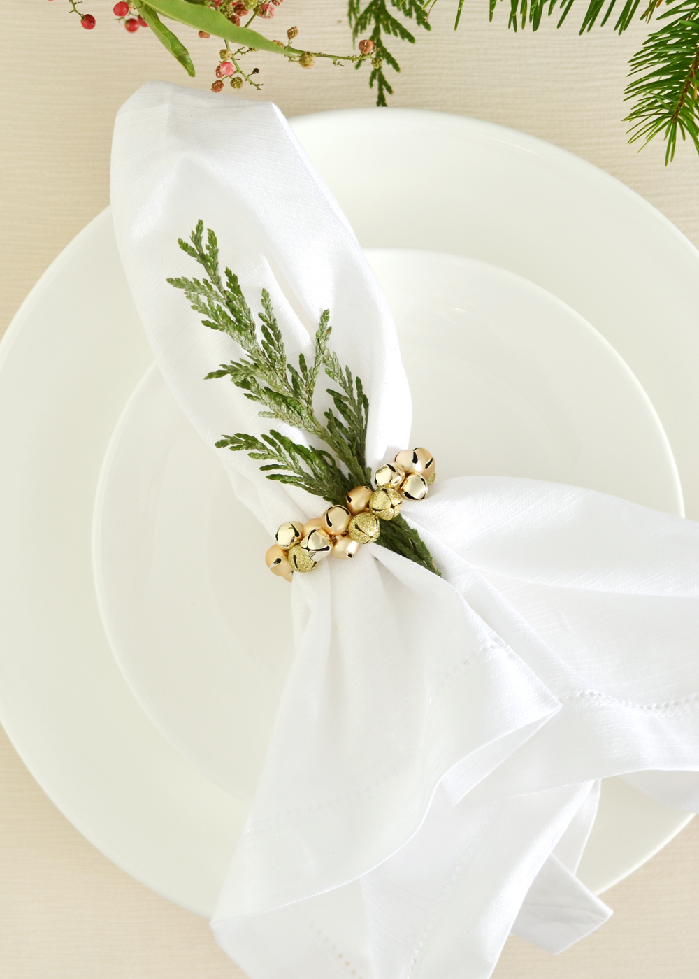 Super easy idea, perfect for Christmas! from boxwoodavenue.com