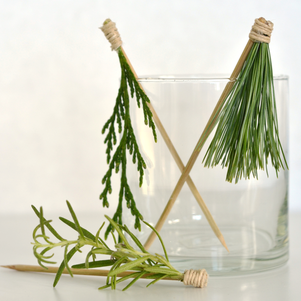 Use nature's work to make these fun cocktail stir sticks! From boxwoodavenue.com