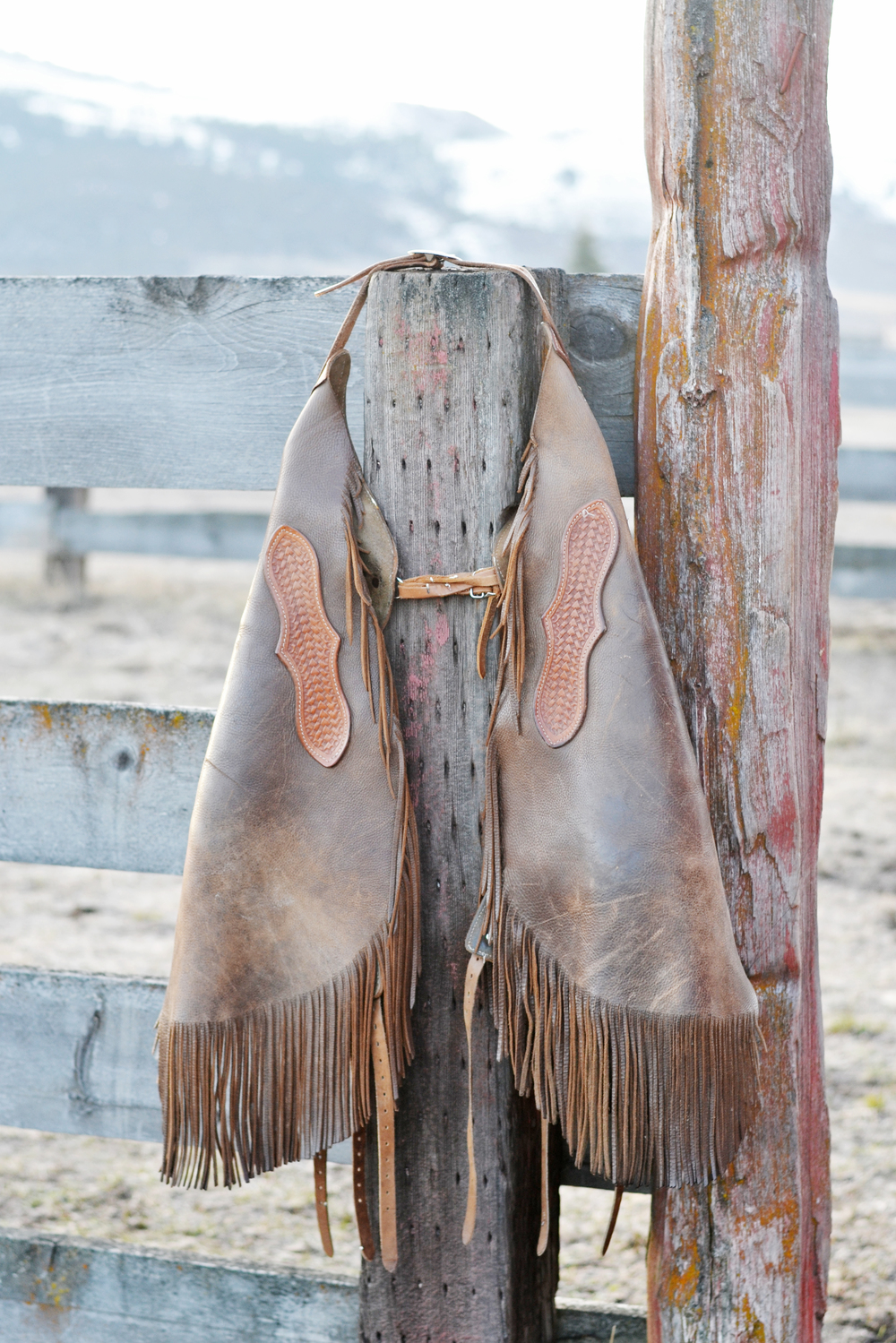 ranch living - a cowboy's chaps | Boxwood Avenue
