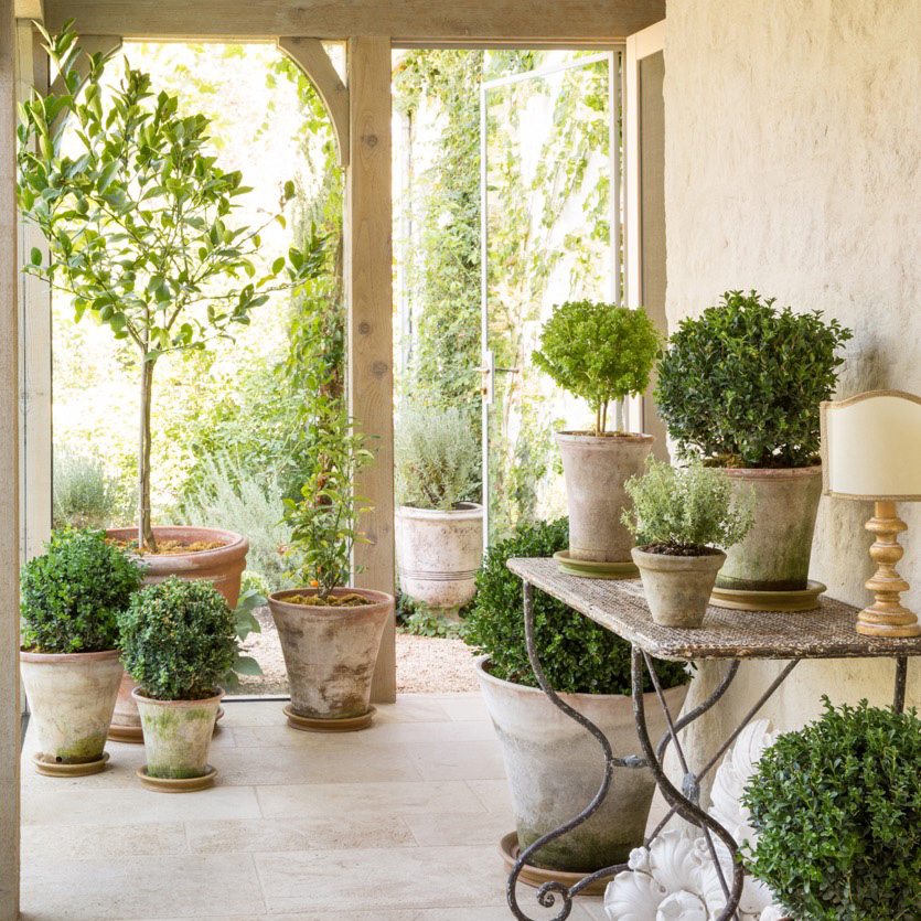 Giannetti Home | Velvet & Linen - Beautiful topiaries and terracotta pots! [http://giannettiarchitects.com/]
