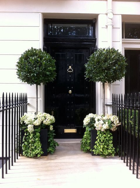 Training your flowering shrubs to be trees and major for Gardening classes near me