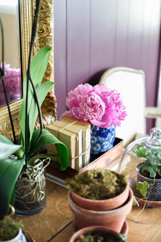 blue & white porcelaine and terra cotta pots  | boxwoodavenue.com | rachel l'antigua photography