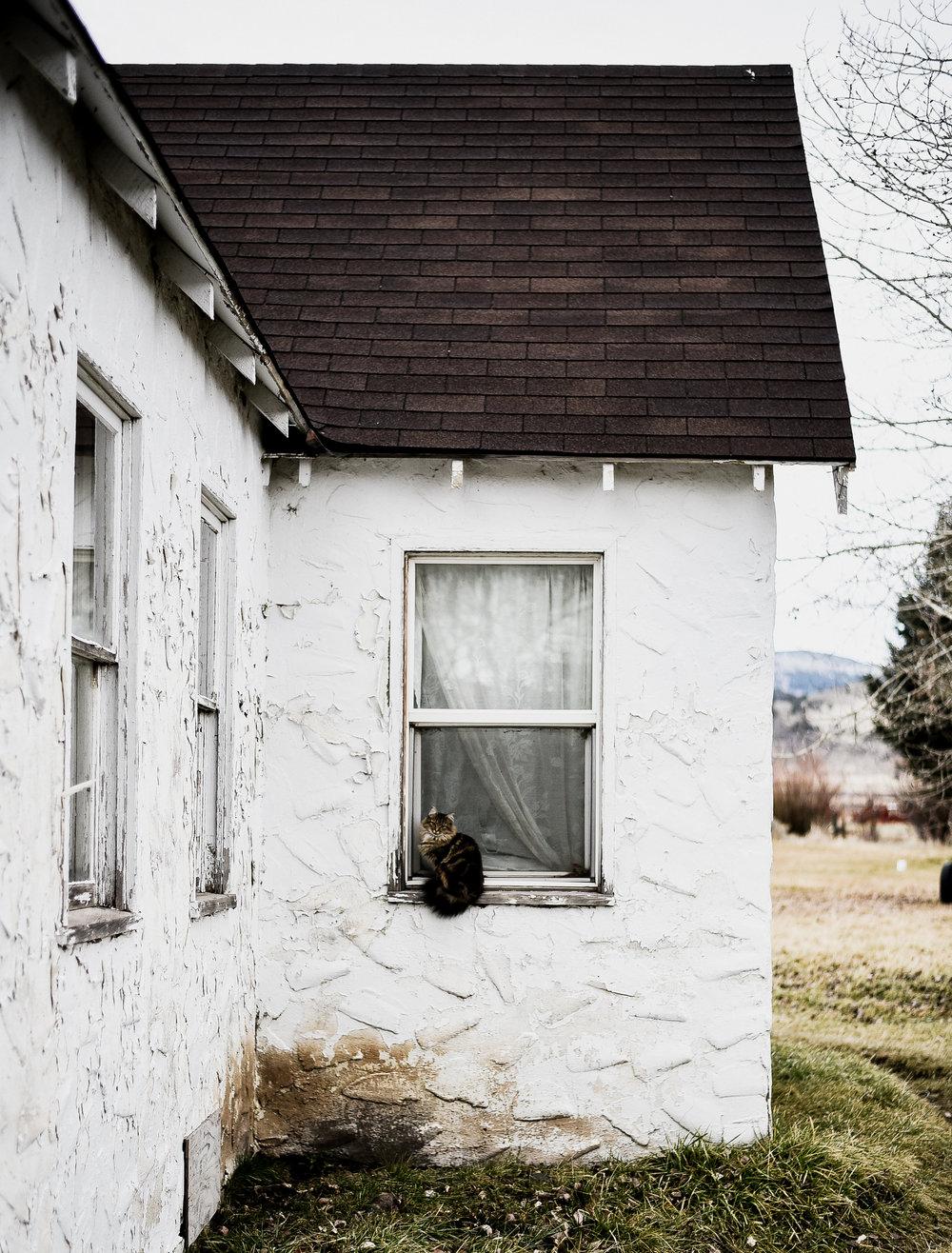 farmhouse design blog boxwoodavenue.com