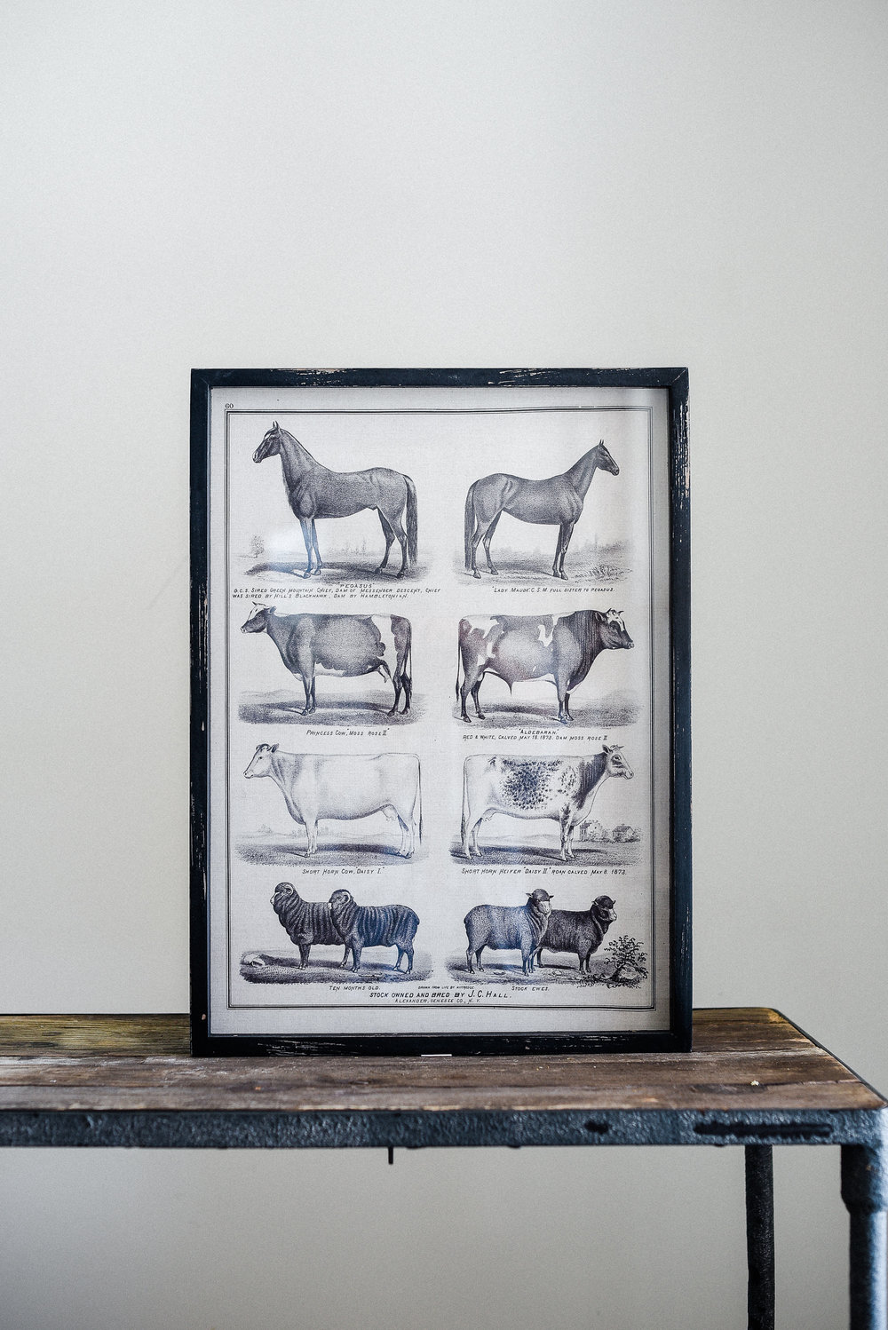 Vintage farmhouse print decor from boxwood avenue