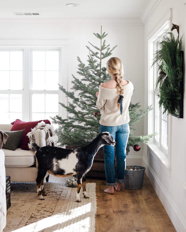 Beautiful Farmhouse Christmas Living Room with minimal tree decor | boxwoodavenue.com