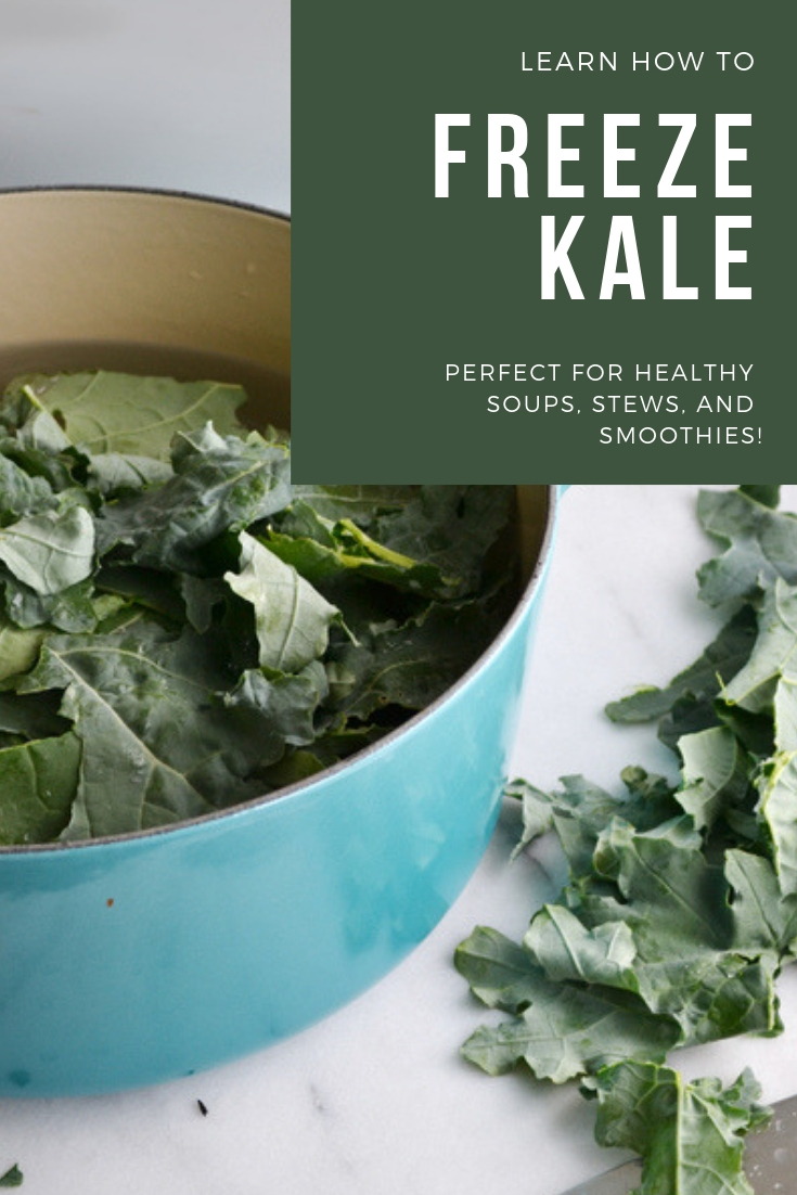 Can kale be frozen? Absolutely! Learn how to freeze kale to preserve for soups, smoothies, and stews! boxwoodavenue.com